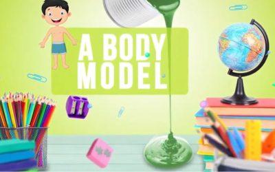 Body Model 2º